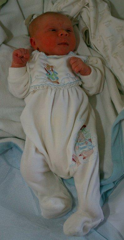 Vincent4 2008-10-30