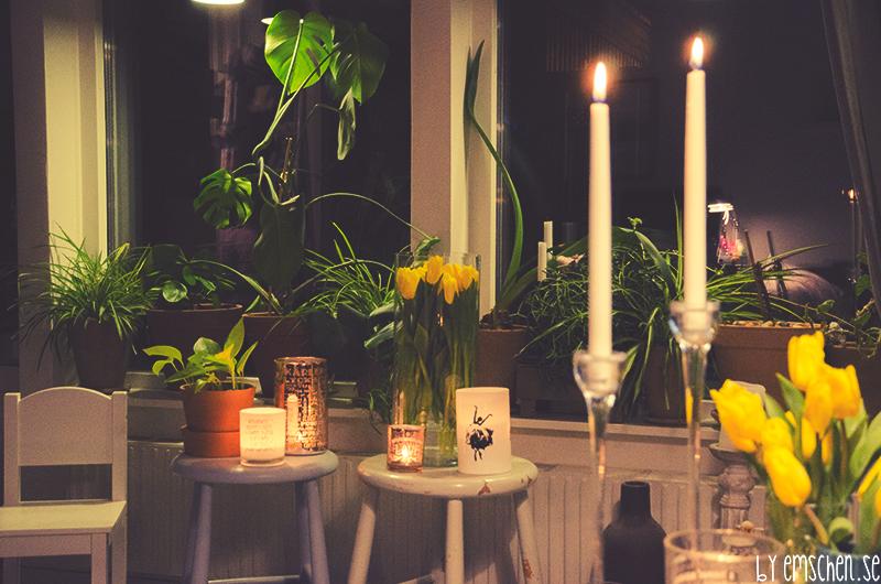 Tulpaner och längtan efter varma kvällar på altanen
